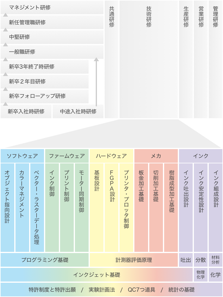 研修制度|教育体系図